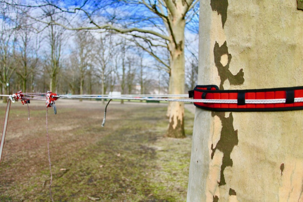 whoopie as a slackline anchor on a tree with tree protection